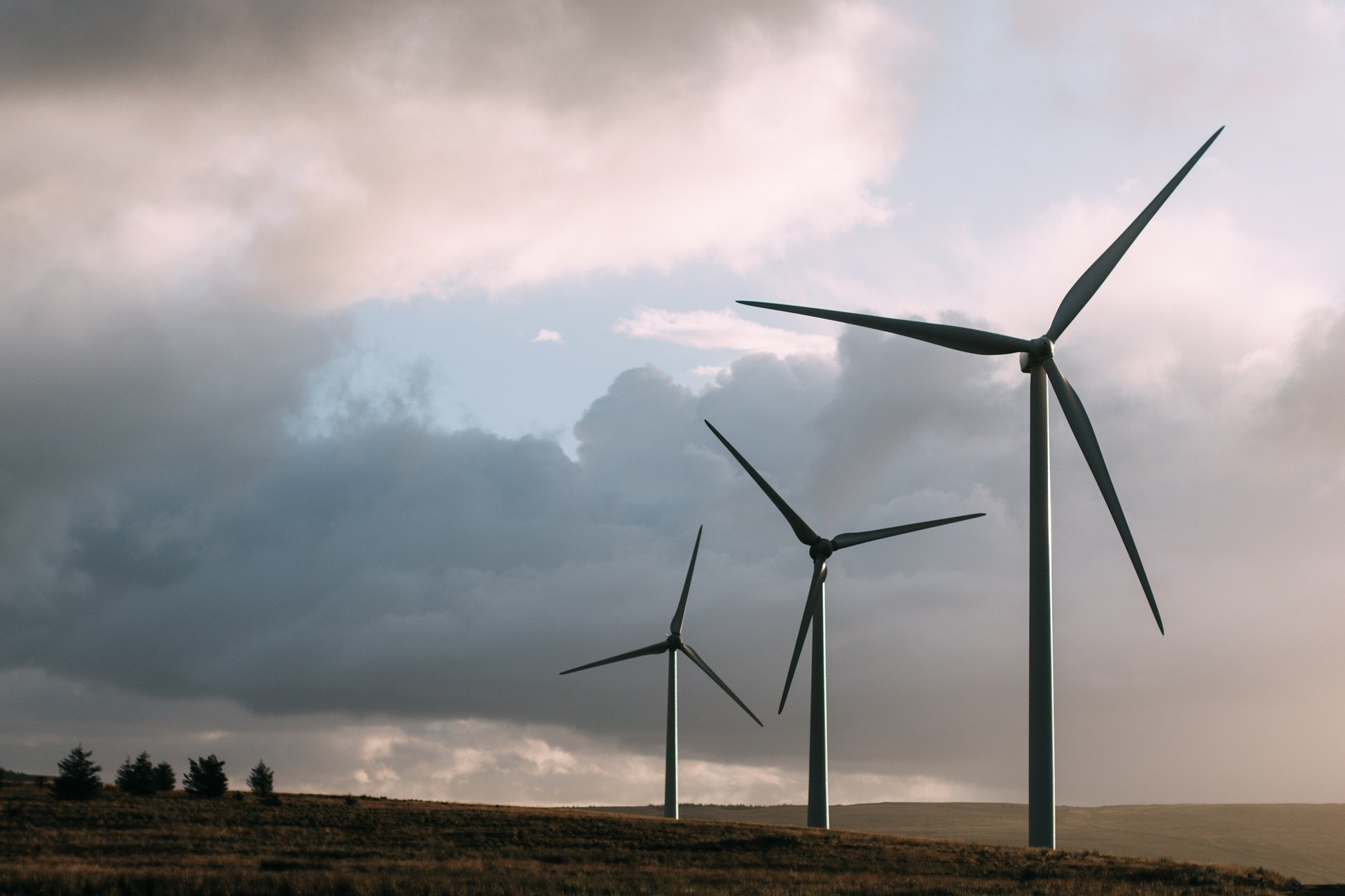 Wind energy gains weight in the Galician community