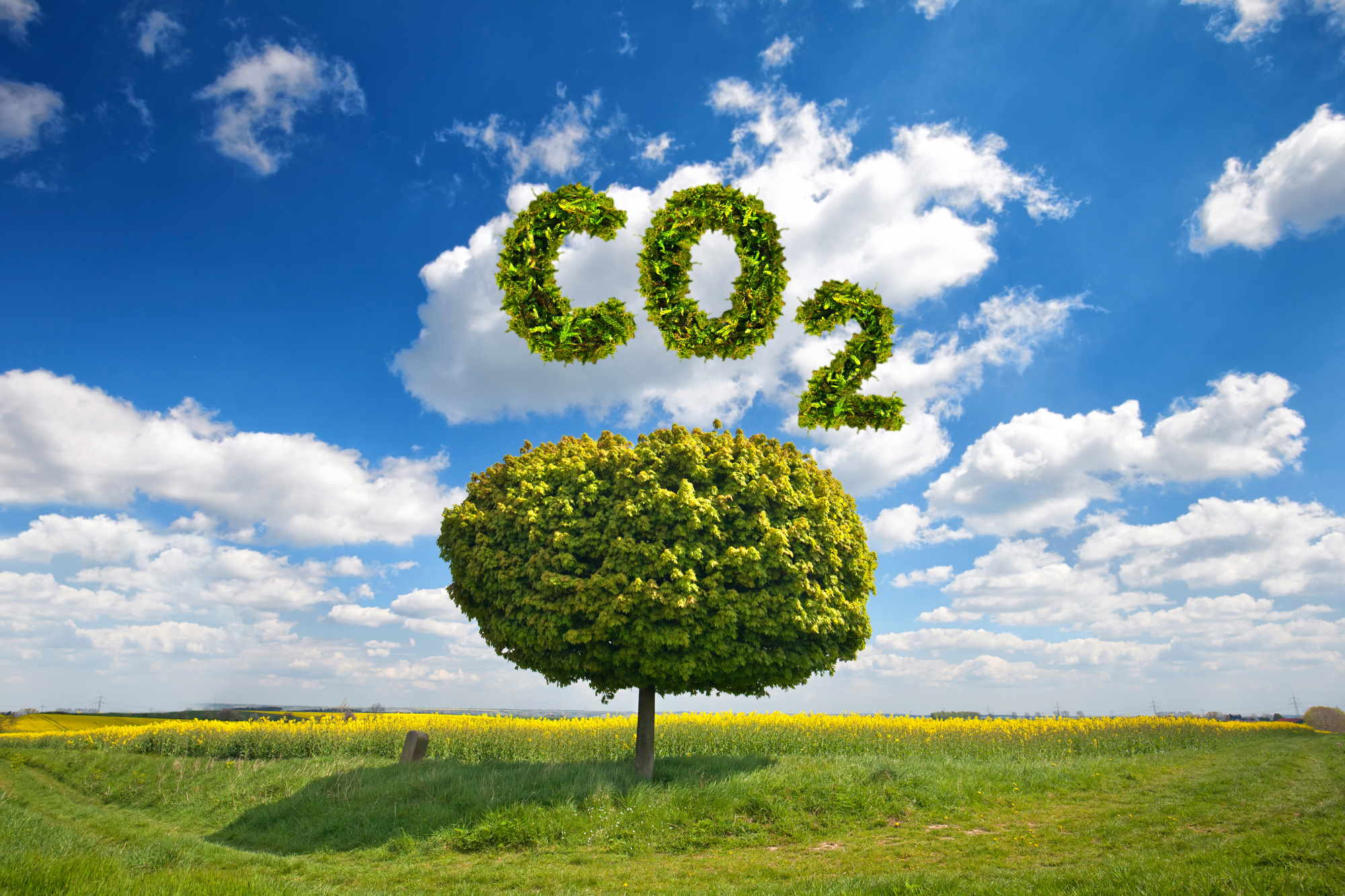 Spain is committed to reducing CO2 emissions