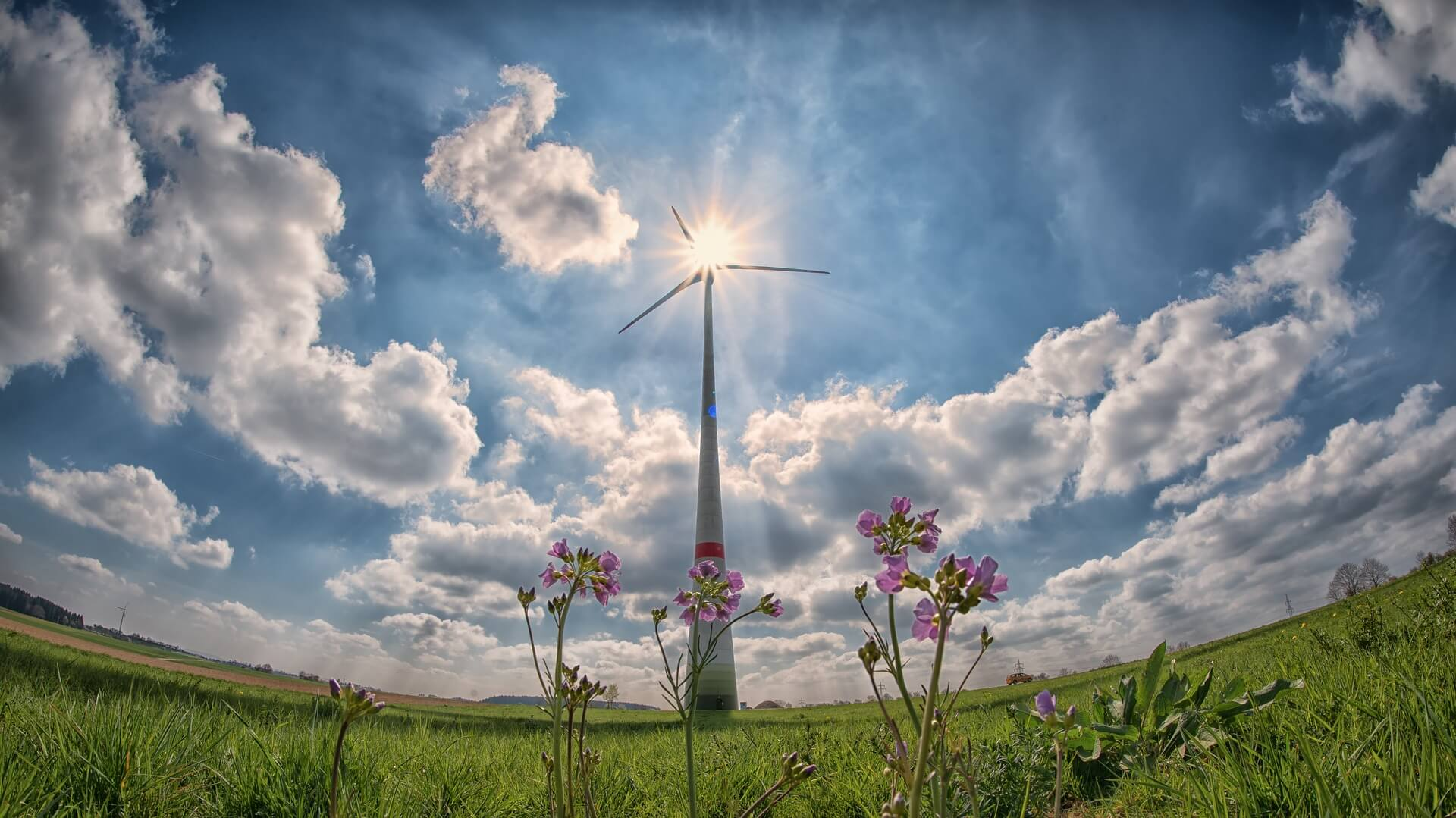 Extremadura has 16.7 million in aid for the promotion of renewable energies